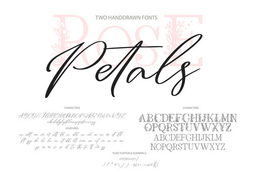 Hand drawn calligraphic vector duo font. Distress grunge texture. Modern script calligraphy type. ABC typography latin alphabet. Two fonts.