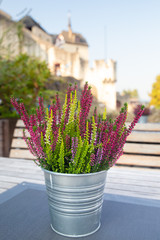 Tin bucket of flowers with ancient castle seen in the background