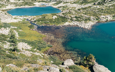 Wall Mural - Wild russian nature. Beautiful emerald lake in the mountains. Lake with clear turquoise water. Traveling in the Altai Republic. Active tourism in Russia in the summer. Siberian reserve.