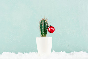 Foto op Canvas Cactus Funny Cristmas cactus decorated with red Christmas ball with snow