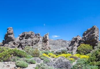 Big Standing Stones Located on Tenerife Island