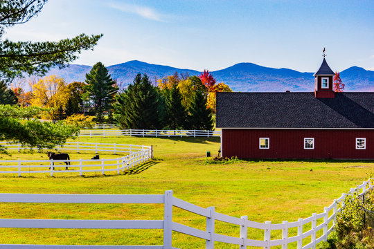 a Vermont horse farm with red barn in autumn fall foliage colors