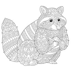 coloring page with raccoon
