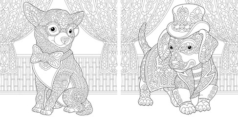 coloring pages with chihuahua and dachshund dogs
