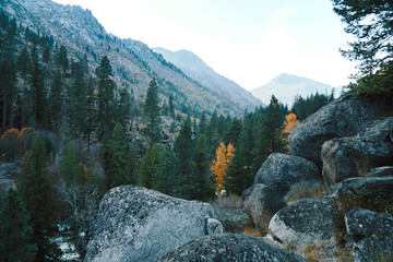 Fall mountain haze in a forested valley