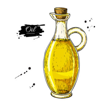 Oil bottle drawing. Vector glass pitcher with cork stopper. Hand drawn colorful jug