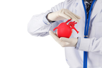 doctor hold heart appear to prevent  , cardiology symptoms in white background