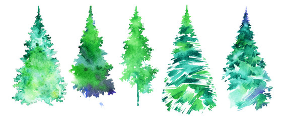 Christmas collection, set of firs, watercolor illustration.