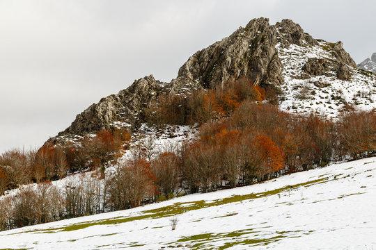 Praderas con nieve, hayedo en otoño y pico de montaña en la Cordillera Cantábrica. Riaño, León, España.