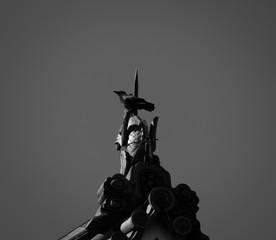 Raven on statue