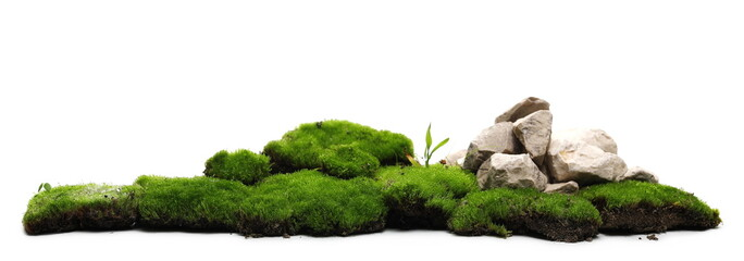 Green moss with decorative rocks isolated on white background