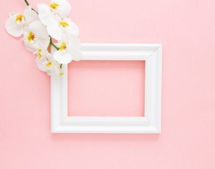 White photo frame with white orchids on the pink background. Beautiful White Phalaenopsis orchid flowers, wooden white photo frame. Women's Day, Flower Card. Valentine's day. Flat lay, top view