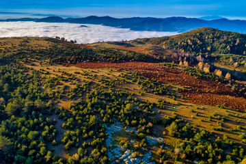 Foto op Plexiglas Diepbruine Aerial view of autumn forest . Amazing landscape , trees with red and orange leaves in day, National Park Livaditis Xanthi, Greece