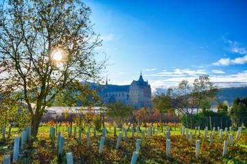 Ehemaliges Kloster in den Weinbergen bei Ahrweiler