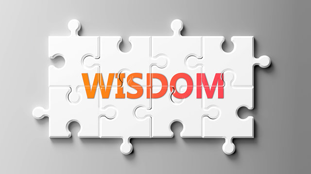 Wisdom complex like a puzzle - pictured as word Wisdom on a puzzle pieces to show that Wisdom can be difficult and needs cooperating pieces that fit together, 3d illustration