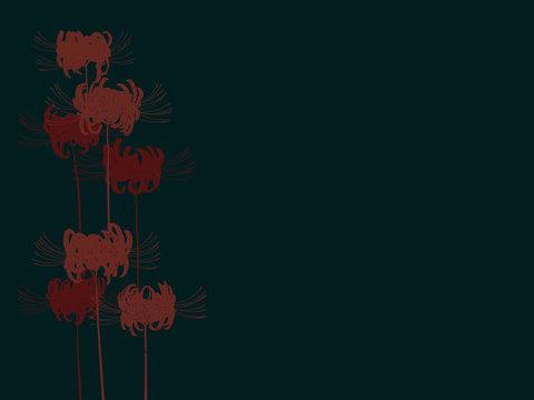 Hand drawn red spider lily silhouette on dark