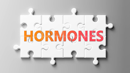 Hormones complex like a puzzle - pictured as word Hormones on a puzzle pieces to show that Hormones can be difficult and needs cooperating pieces that fit together, 3d illustration