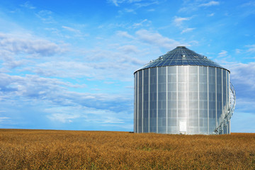Large grain bin Saskatchewan, Canada
