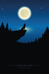 wolf howls to the full moon in a starry night by lake vector illustration EPS10