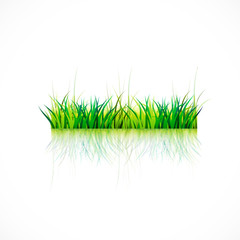 Grass with vivid colors and reflections vector image background