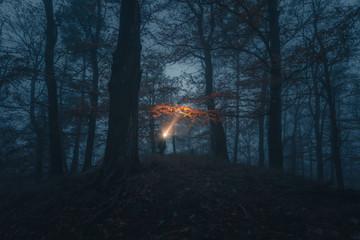 Wald, Nebel, Lampe