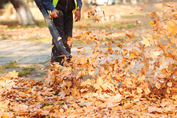Worker in uniform is cleaning falling leaves on city street in autumn Wall mural