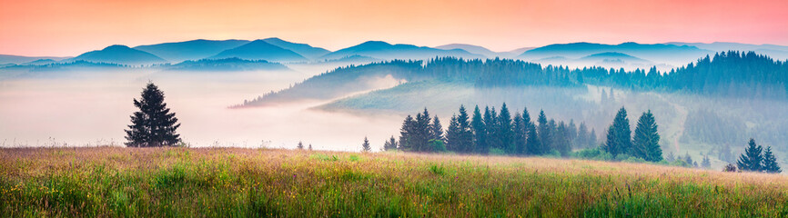 Foggy morning panorama of mountains valley. Picturesque summer sunrise in Carpathian mountains, Rika village location, Transcarpathian, Ukraine, Europe. Beauty of nature concept background.