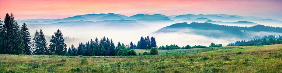 Wall Mural - Panorama morning view of foggy Carpathian mountains. Great summer sunrise in Borzhava ridge, Transcarpathian, Ukraine, Europe. Beauty of nature concept background..