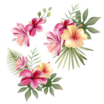 Beautiful tropical exotic flowers, floral bouquets, compositions, arrangement, wreaths watercolor illustration isolated on white