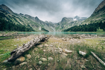Wall Mural - Wild russian nature. Beautiful landscape with emerald lake in the mountains. Multa Lake with clear turquoise water. Traveling in the Altai Republic. Katun Nature Reserve. Fallin old tree.