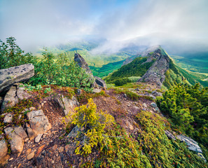 Wall Mural - Colorful summer sunrise in the foggy Carpathian mountains. Chornogora ridge, Ukraine. Splendid morning view of rocky mountains. Beauty of nature concept background..