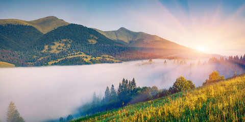 Wall Mural - Breathtaking morning scene of Carpathians. Foggy sunrise in mountains, Rika village location, Transcarpathians, Ukraine, Europe. Beauty of nature concept background..