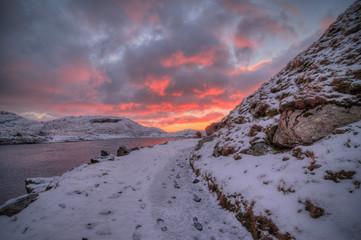 Photo sur Toile Lavende snowdon