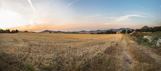 fields in the Czechs, the vastness of the hills Fotoväggar