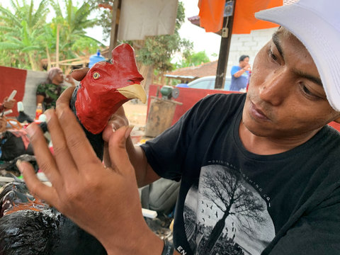 Tarjaya, 35, prepares a sculpture of a rooster made from industrial waste and chicken feathers before putting it up for sale, at his workshop in Indramayu, West Java province