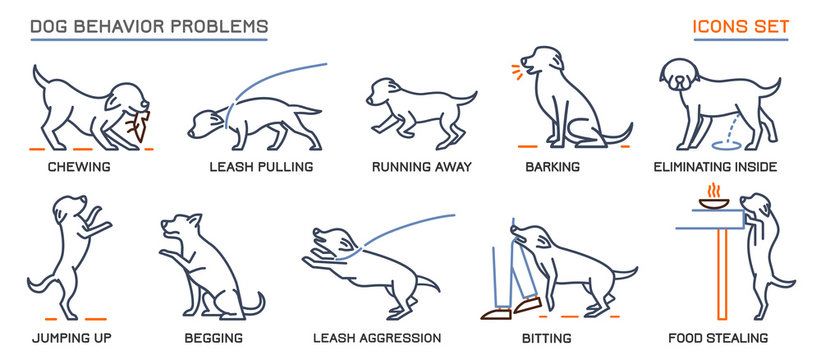Dog Behavior Problems Icons Set