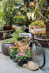 Fotorolgordijn Fiets Old vintage bicycle with plants and flowers as a cafe decoration