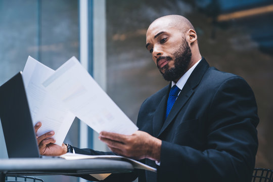 Respectable black businessman attentively checking reports