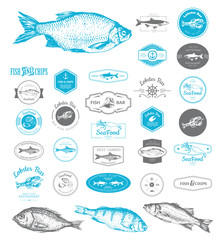 Vector Illustration with logo for fish restaurant or fish market. Logo set for fish restaurant or bar with a picture of the fish. Blue sings on white background.