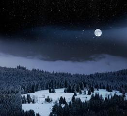 Wall Mural - Gemütliche Holzhütte in einer Winternacht