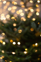 Blurred photo of Christmas tree shining with lights of garland