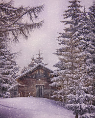 Small wooden chalet on the Austrian Alps with snowfall framed by fir trees at dusk