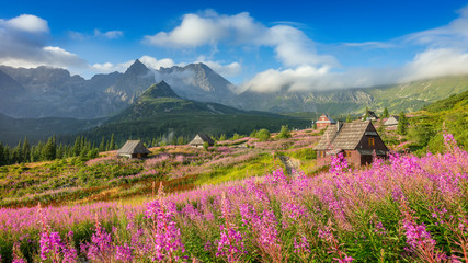 Piękny górski krajobraz, Tatry, Zakopane