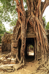 ancient temple Ta Som Gate complex Khmer architectur city in the jungle Siem Reap Cambodia
