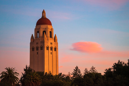Stanford Hoover Tower