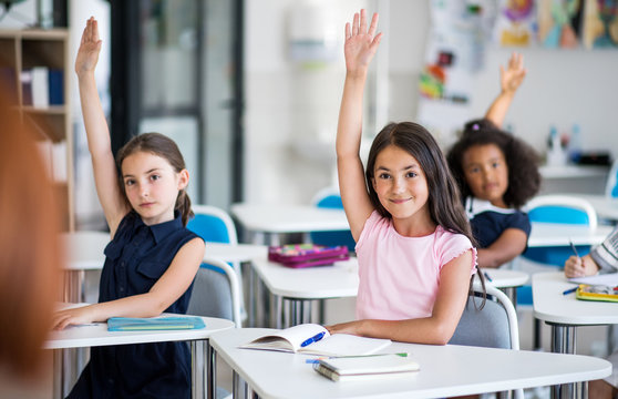 School children sitting at the desk in classroom on the lesson, raising hands.