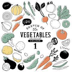 Fototapeta オシャレな手描き野菜セット01/カラフル obraz