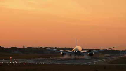 Tuinposter Rear view of widebody twin engine airplane landing in the early morning. Picturesque sunset at the background,