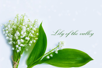 Wall Murals Lily of the valley Natural floral background of spring flowers lily of the valley