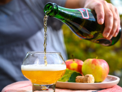 Tasting of french apple cider made from new harvest apples outdoor in orchard